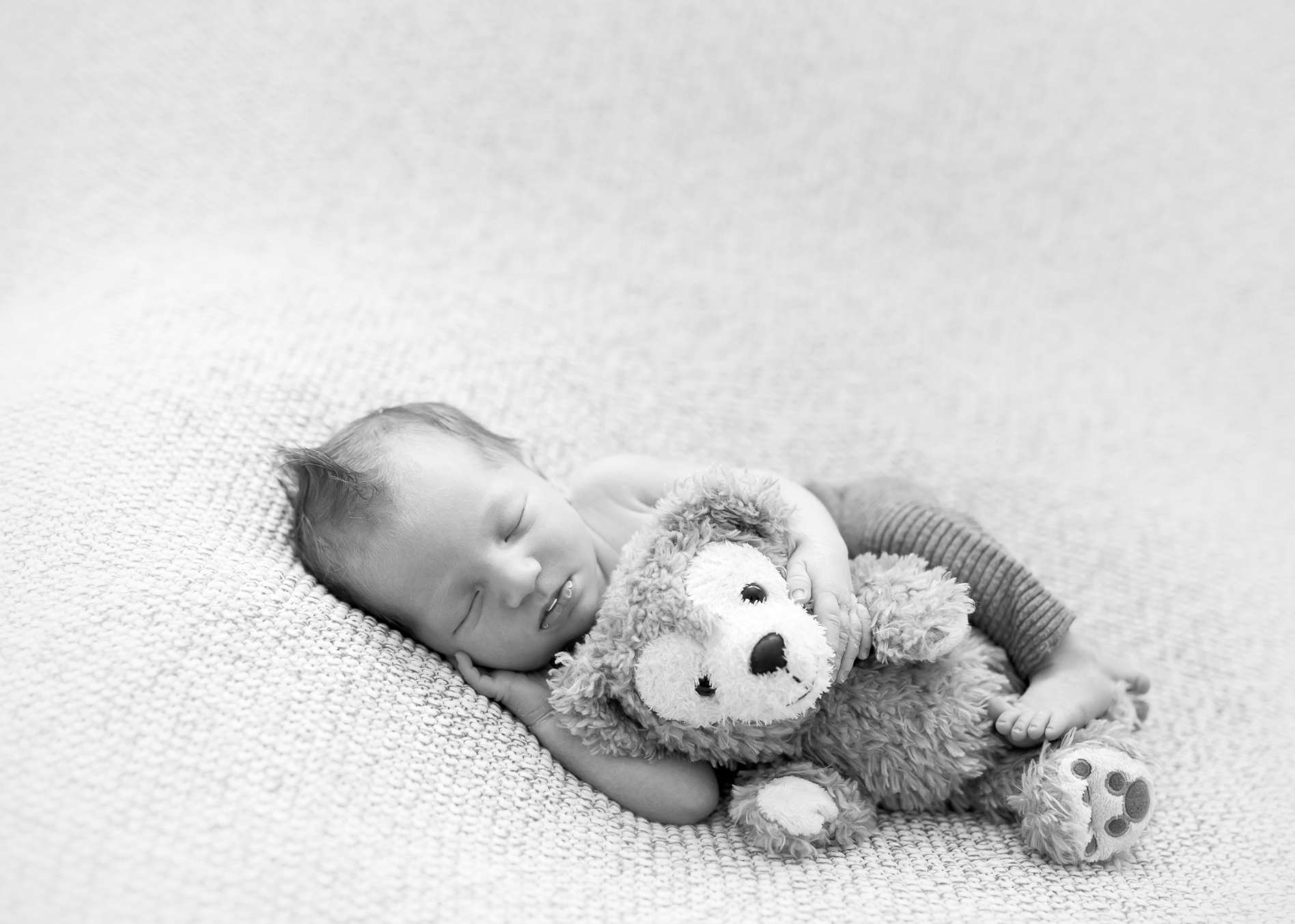 Boy + Bear | Utah County Newborn Baby Photography Studio