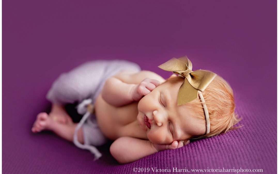 Pretty in Purple| Utah County Newborn Baby Photographer