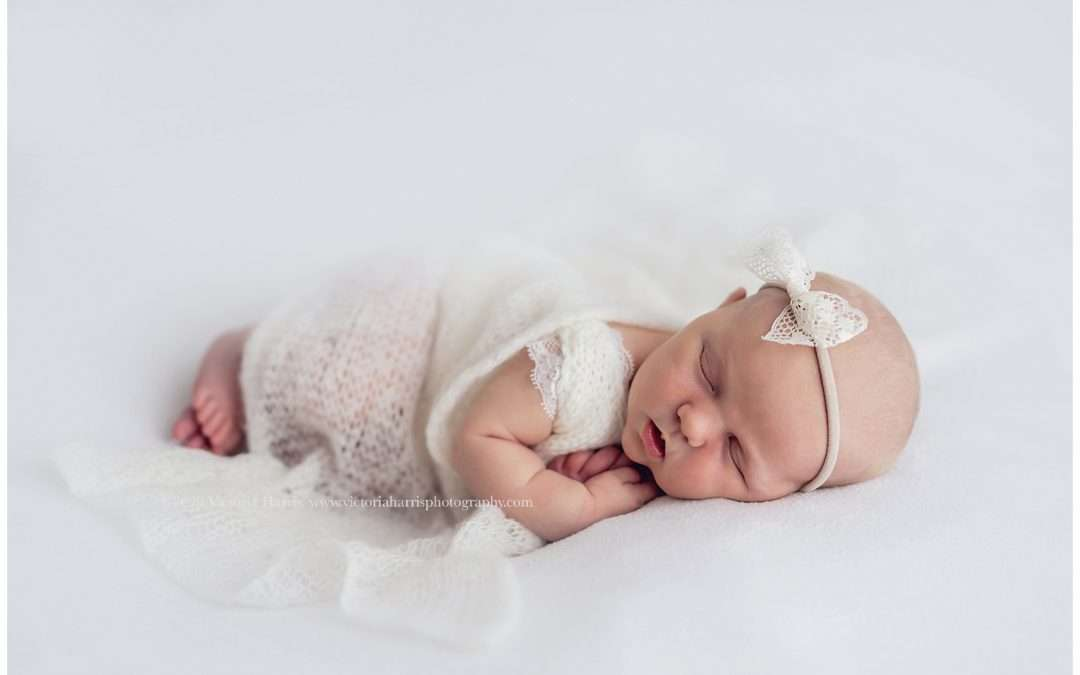 White + Cream Newborn Session | Utah County Newborn Baby Photographer